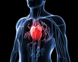 Interventional Services in Terms of Heart Diseases